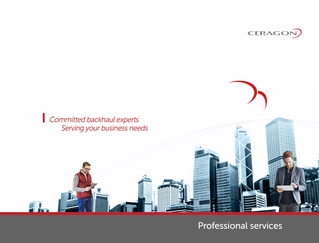 Professional Services_guide