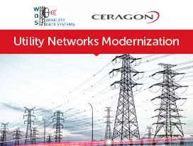 Utilities Network Modernization - Case Study